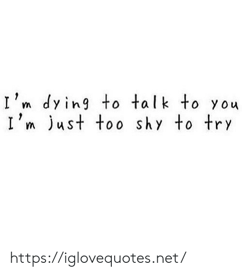Im Dying: I'm dying to talk to you  I'm ust too shy to try https://iglovequotes.net/