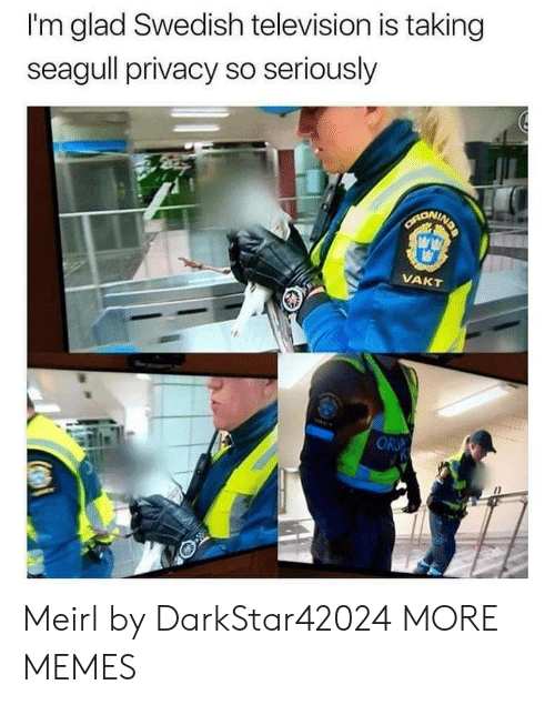 Swedish: I'm glad Swedish television is taking  seagull privacy so seriously  SARONING  VAKT  OR Meirl by DarkStar42024 MORE MEMES