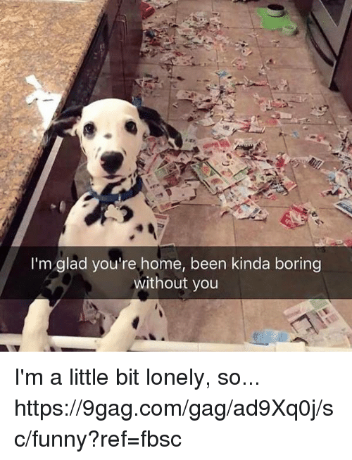 gagging: I'm glad you're home, been kinda boring  without you I'm a little bit lonely, so... https://9gag.com/gag/ad9Xq0j/sc/funny?ref=fbsc