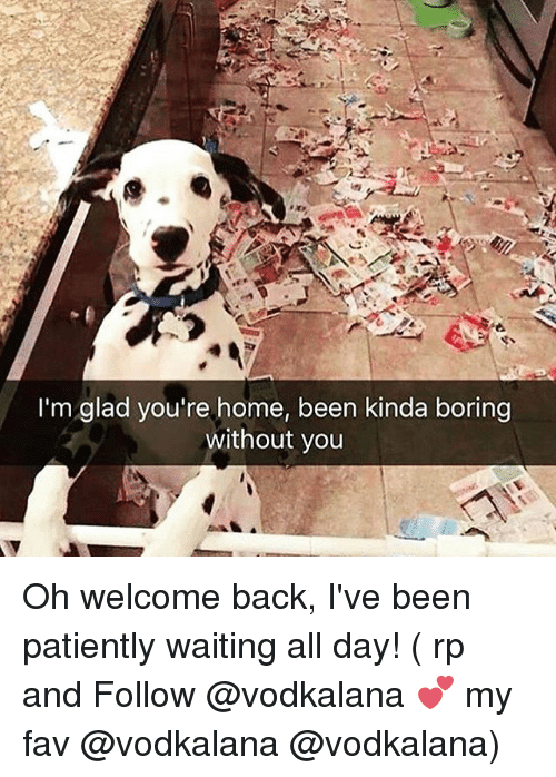 Memes, Home, and Patiently Waiting: I'm glad you're home, been kinda boring  without you Oh welcome back, I've been patiently waiting all day! ( rp and Follow @vodkalana 💕 my fav @vodkalana @vodkalana)