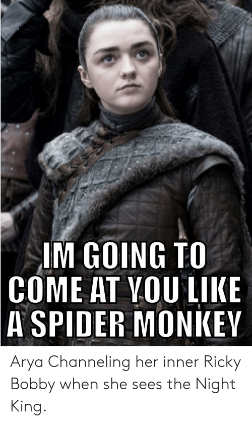 spider monkey: IM GOING TO  COME AT VOU LIKE  A SPIDER MONKEY Arya Channeling her inner Ricky Bobby when she sees the Night King.