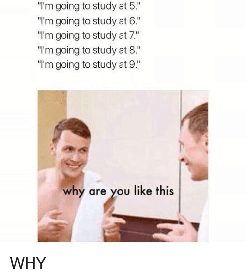 "Memes, Why Are You Like This, and 🤖: ""I'm going to study study at 5  ""I'm going to study at 6.""  ""I'm going to study at 7""  ""I'm going to study at 8.  ""I'm going to study at 9.  why are you like this WHY"