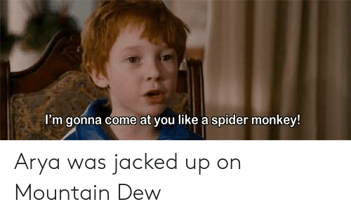spider monkey: I'm gonna come at you like a spider monkey! Arya was jacked up on Mountain Dew