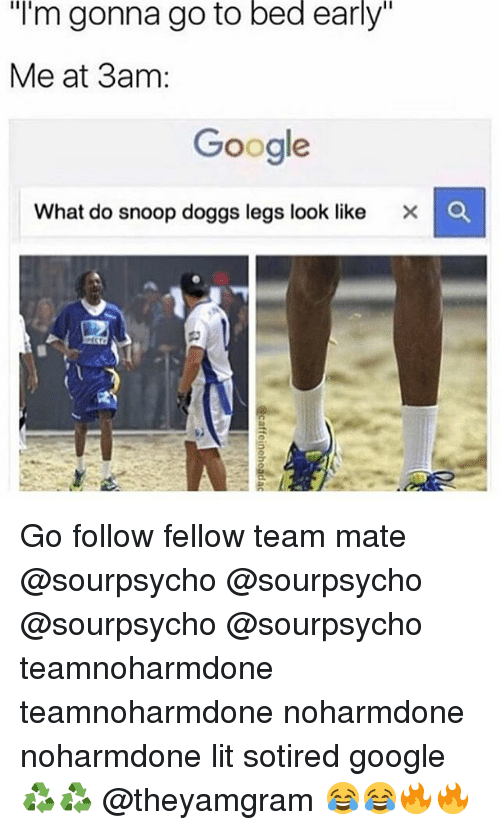 "Snooping: ""I'm gonna go to bed early""  Me at 3am:  Google  What do snoop doggs legs look like X C Go follow fellow team mate @sourpsycho @sourpsycho @sourpsycho @sourpsycho teamnoharmdone teamnoharmdone noharmdone noharmdone lit sotired google ♻️♻️ @theyamgram 😂😂🔥🔥"