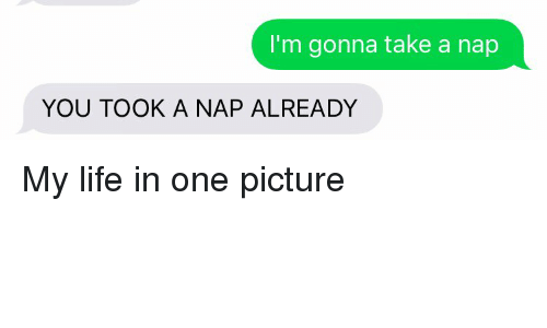 Funny: I'm gonna take a nap  YOU TOOK A NAP ALREADY My life in one picture