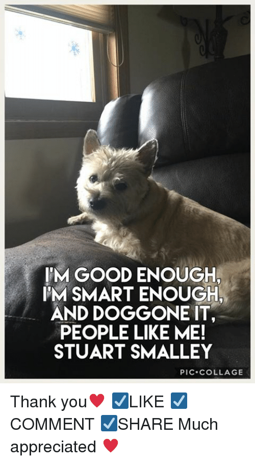 stuart smalley: IM GOOD ENOUGH  IM SMART ENOUGH  AND DOGGONE IT  PEOPLE LIKE ME!  STUART SMALLEY  PIC.COLLAGE Thank you♥️ ☑️LIKE ☑️COMMENT ☑️SHARE Much appreciated ♥️