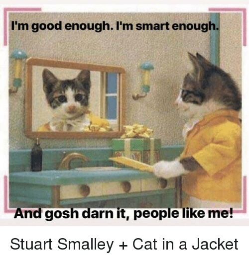 stuart smalley: I'm good enough. I'm smart enough  And gosh darn it, people like me! Stuart Smalley + Cat in a Jacket