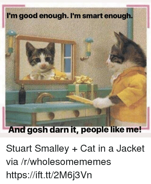 stuart smalley: I'm good enough. I'm smart enough  And gosh darn it, people like me! Stuart Smalley + Cat in a Jacket via /r/wholesomememes https://ift.tt/2M6j3Vn