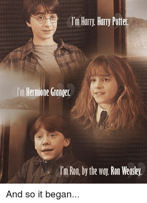 Funny Harry Potter And Hermione Memes : I m harry potter hermione granger im ron by the way