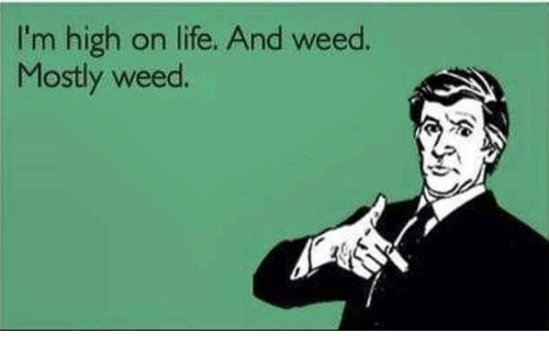 Life, Memes, and 🤖: I'm high on life. And weed  Mostly weed.