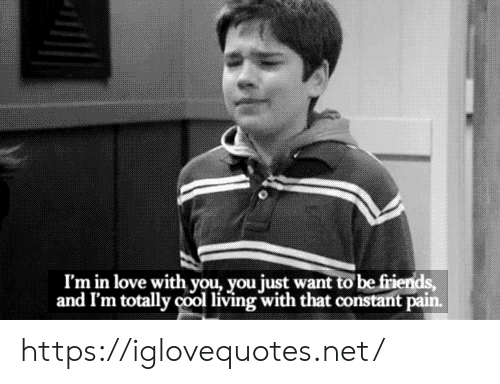 Im In Love: I'm in love with you, you just want to be friends,  and I'm totally cool living with that constant pain. https://iglovequotes.net/