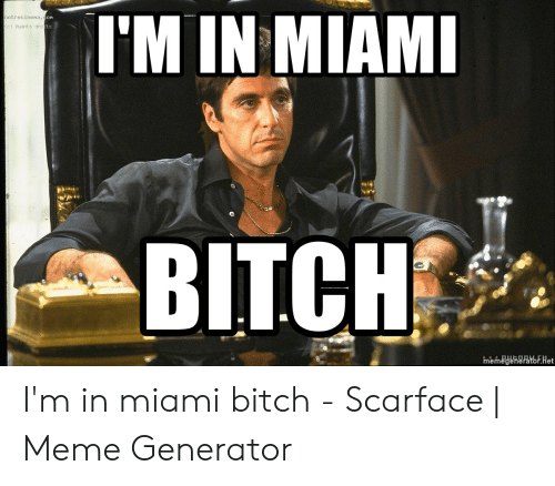 Meme, Scarface, and Miami: I'M IN MIAMI  notrecinena.com  c) Ayants dro ts  BITCH  memegeneratoF.Het I'm in miami bitch - Scarface | Meme Generator