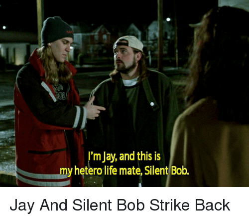 jay and silent bob: I'm Jay, and this is  my heterolife mate, Silent Bob Jay And Silent Bob Strike Back