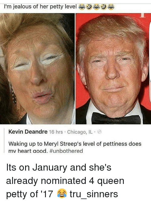 Jealous, Memes, and Meryl Streep: I'm jealous of her petty level  Kevin Deandre 16 hrs Chicago, IL  Waking up to Meryl Streep's level of pettiness does  mv heart aood. Its on January and she's already nominated 4 queen petty of '17 😂 tru_sinners
