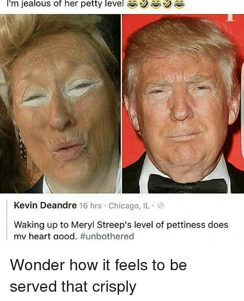 Jealous, Memes, and Meryl Streep: I'm jealous of her petty level R  Kevin Deandre 16 hrs Chicago, IL  Waking up to Meryl Streep's level of pettiness does  mv heart aood. Wonder how it feels to be served that crisply