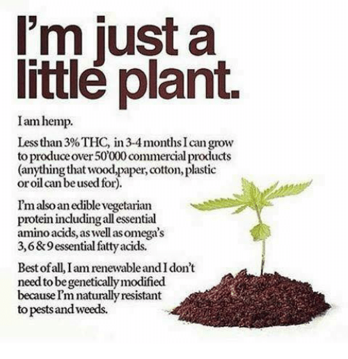 amino acids: I'm just a  little plant.  Iam hemp.  Less than 3% THC, in 3-4 months can grow  to produce over50000commercial products  (anything that wood,paper, cotton, plastic  or oil can be used for).  I'm alsoanedible'vegetarian  protein includingallessential  amino acids, aswell asom  3,6&9essential fatty acids.  Best of all, Iam renewableandldon't  needto be geneticallymodified  becauseImnaturallyresistant  to pestsandweeds.