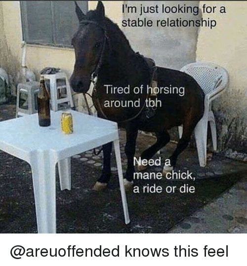 Tbh, Dank Memes, and Red: I'm just looking for a  stable relationship  Tired of horsing  red oft  around tbh  Need  mane chick,  a ride or die @areuoffended knows this feel