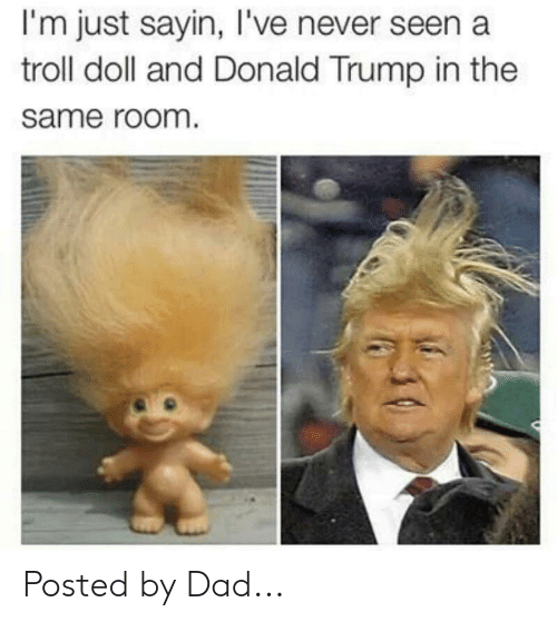 troll doll: I'm just sayin, I've never seen a  troll doll and Donald Trump in the  same room Posted by Dad...