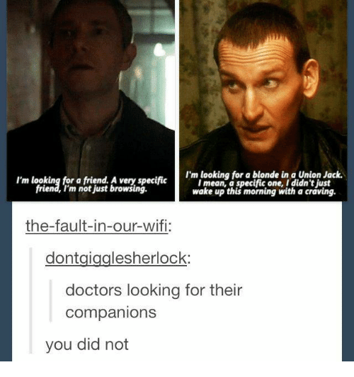 The Fault In Our: I'm looking for a blonde in a Union Jack.  I'm looking for a friend. A very specific  I mean a specific one, I didn't ust  friend, I'm not just browsing.  wake up this morning with a crdving.  the-fault-in-our-wifi:  dont gigglesherlock:  doctors looking for their  Companions  you did not