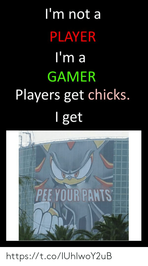 chicks: I'm not a  PLAYER  l'm a  GAMER  Players get chicks  l get  PEE YOUR PANTS https://t.co/IUhIwoY2uB