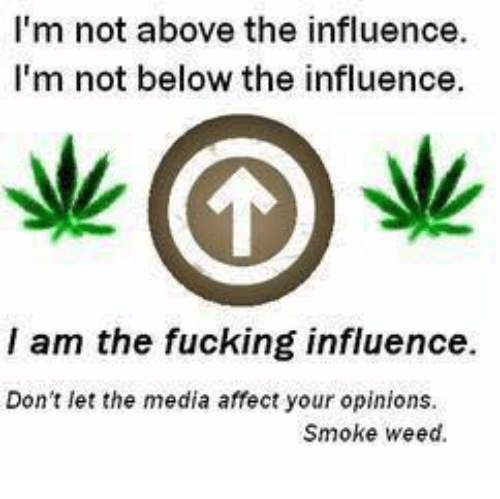 Smoke Weed: I'm not above the influence.  I'm not below the influence.  I am the fucking influence  Don't let the media affect your opinions.  Smoke weed.