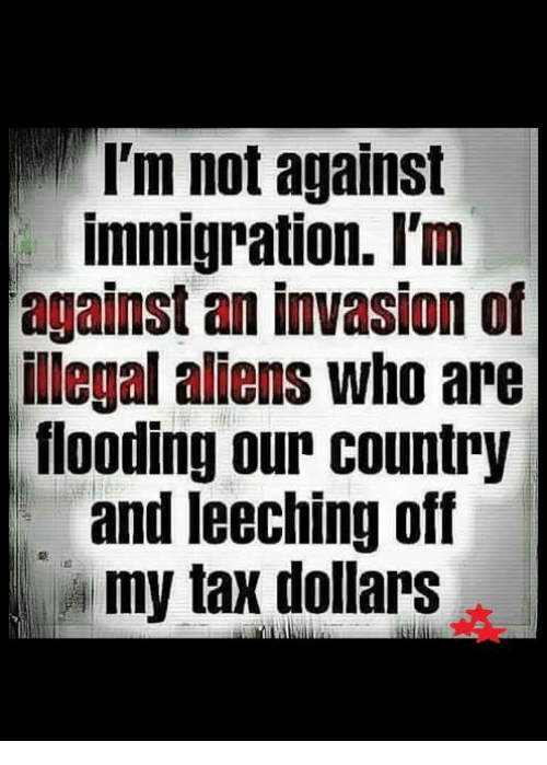 Leech: I'm not against  immigration. I'm  against an invasion of  illegal aliens who are  flooding our country  and leeching off  my tax dollars