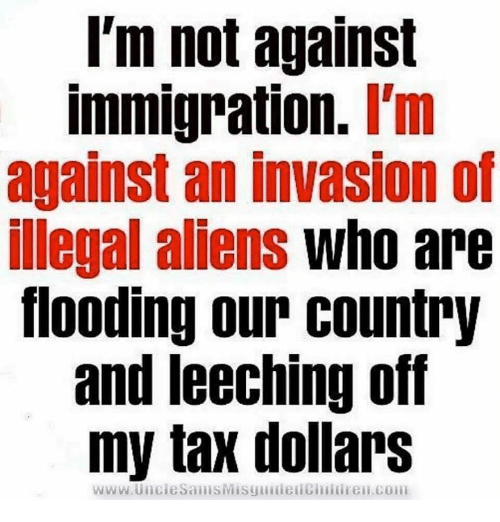 Illegal immigration and overpopulation