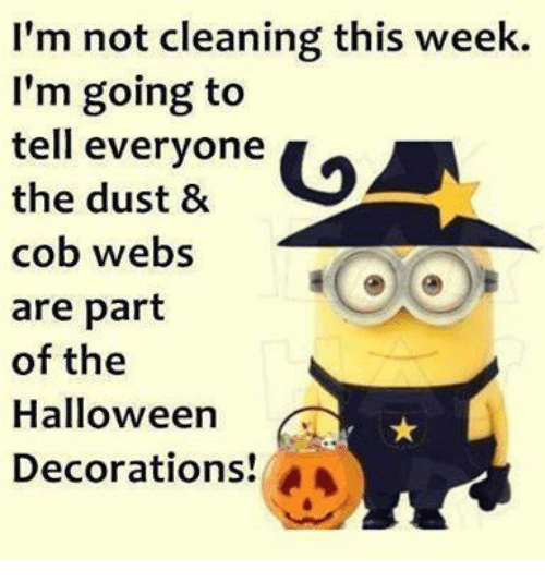 Funny cob memes of 2017 on sizzle candy for M m halloween decorations
