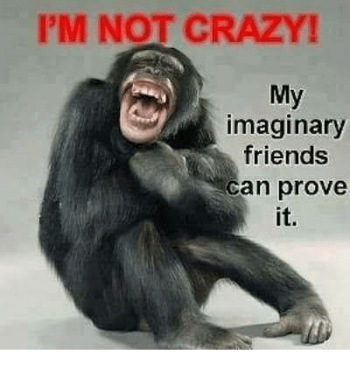 I'M NOT CRAZY My Imaginary Friends Can Prove It