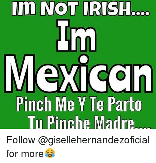 Memes, 🤖, and Pinch Me: Im NOT IRISH  Im  Mexican  Pinch Me Y Te Parto  Tu Pinche Madre Follow @gisellehernandezoficial for more😂