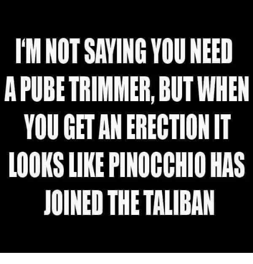 trimmer: I'M NOT SAVING YOU NEED  A PUBE TRIMMER, BUT WHEN  YOU GET AN ERECTION IT  LOOKS LIKE PINOCCHIO HAS  JOINED THE TALIBAN