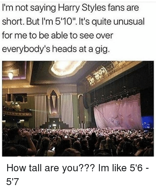 """Memes, Harry Styles, and Quite: I'm not saying Harry Styles fans are  short. But I'm 5'10"""". It's quite unusual  for me to be able to see over  everybody's heads at a gig How tall are you??? Im like 5'6 - 5'7"""