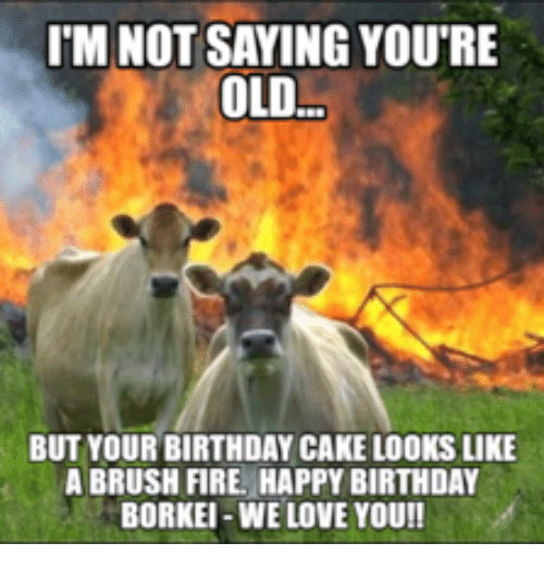 IM NOT SAYING YOU'RE OLD BUT YOUR BIRTHDAY CAKE LOOKS LIKE A BRUSH FIRE HAPPY BIRTHDAY BORKEI-WE