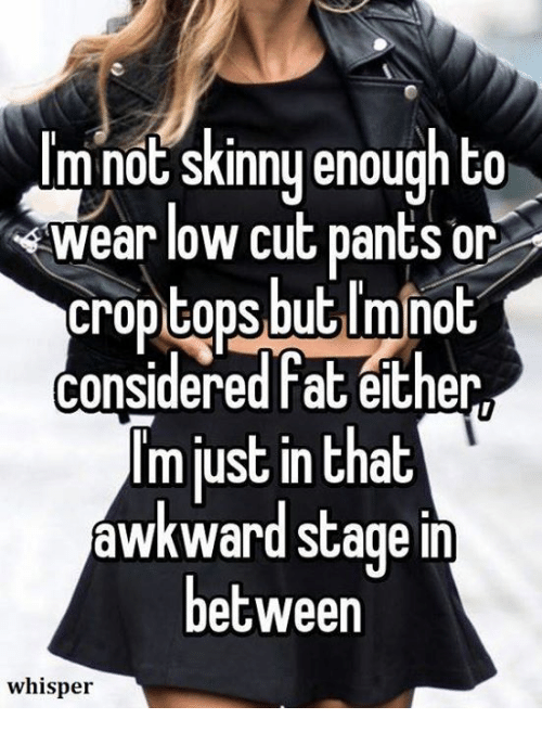 Skinny: I'm not skinny enough to  wear low cut pants or  croptops but I'minot  considered fat either  lm just in that  awkward stage in  between  whisper