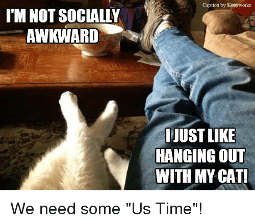 are labs good with cats