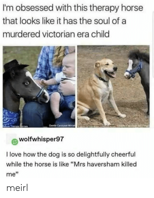 "era: I'm obsessed with this therapy horse  that looks like it has the soul of a  murdered victorian era child  Gende Carousal Minia  wolfwhisper97  I love how the dog is so delightfully cheerful  while the horse is like ""Mrs haversham killed  me"" meirl"