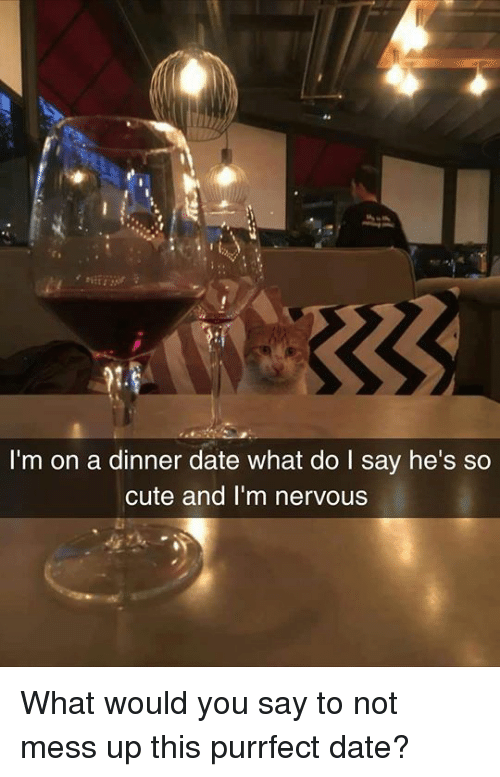 dinner date: I'm on a dinner date what do I say he's so  cute and I'm nervous What would you say to not mess up this purrfect date?