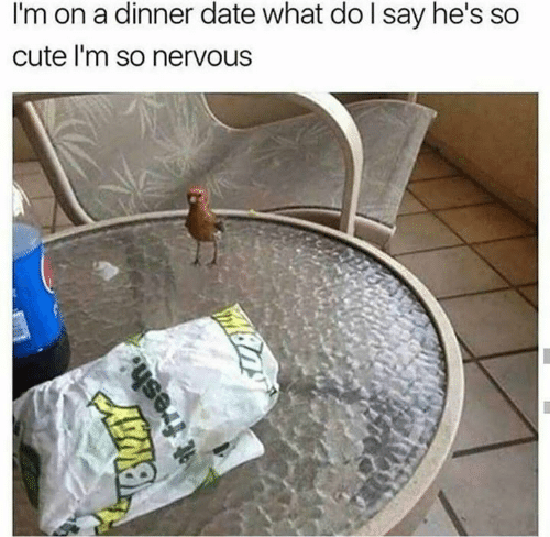dinner date: I'm on a dinner date what do l say he's so  cute l'm so nervous