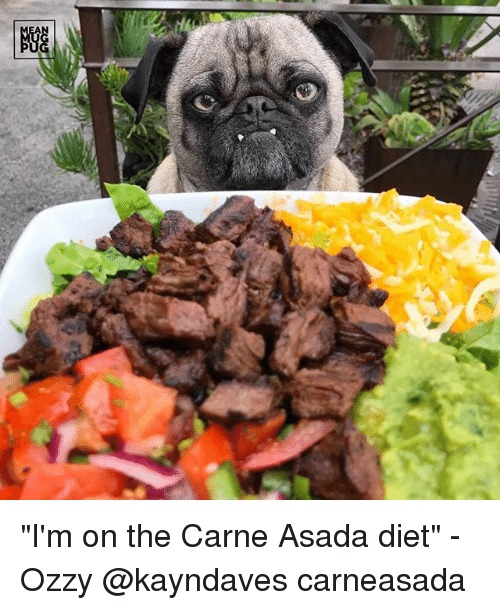 "carne asada: ""I'm on the Carne Asada diet"" -Ozzy @kayndaves carneasada"
