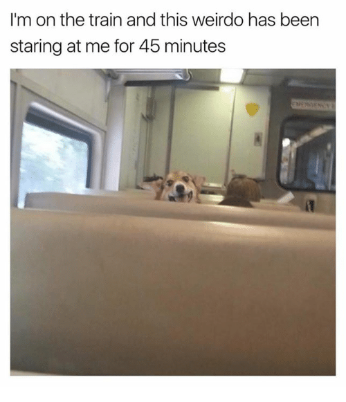 Dank, Train, and Been: I'm on the train and this weirdo has been  staring at me for 45 minutes