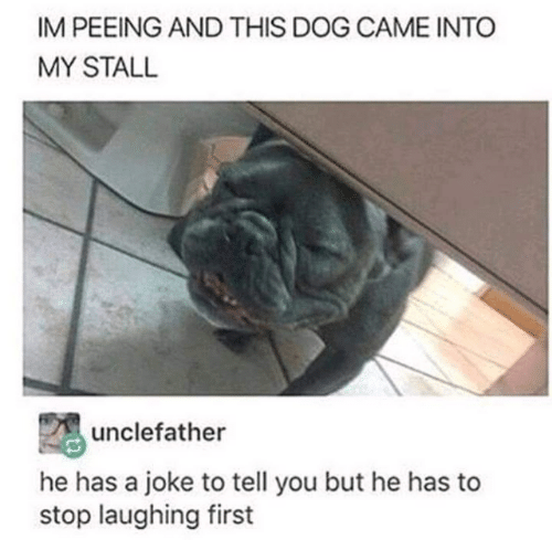 peeing: IM PEEING AND THIS DOG CAME INTO  MY STALL  unclefather  he has a joke to tell you but he has to  stop laughing first