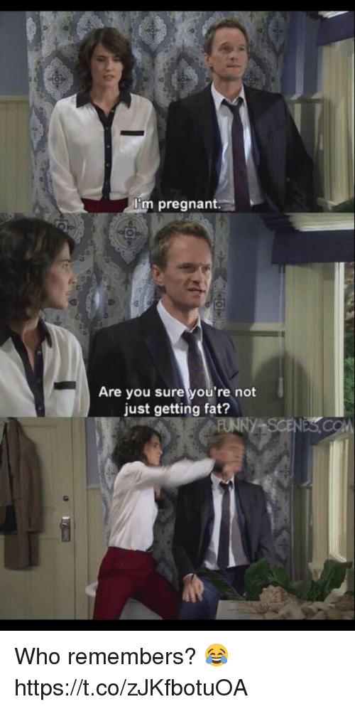 Memes, Pregnant, and Fat: I'm pregnant  Are you sure you're not  just getting fat? Who remembers? 😂 https://t.co/zJKfbotuOA
