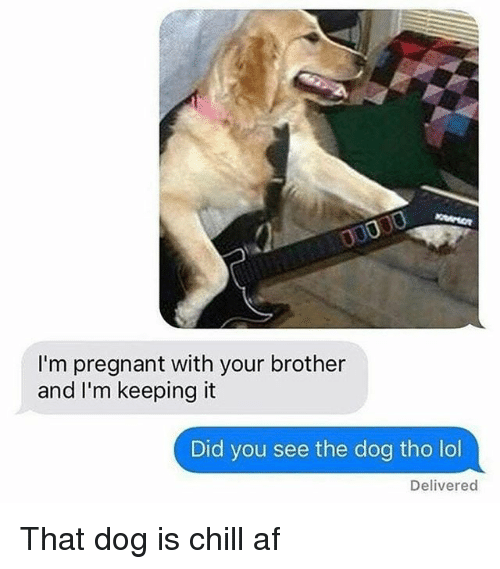 Af, Chill, and Lol: I'm pregnant with your brother  and I'm keeping it  Did you see the dog tho lol  Delivered That dog is chill af