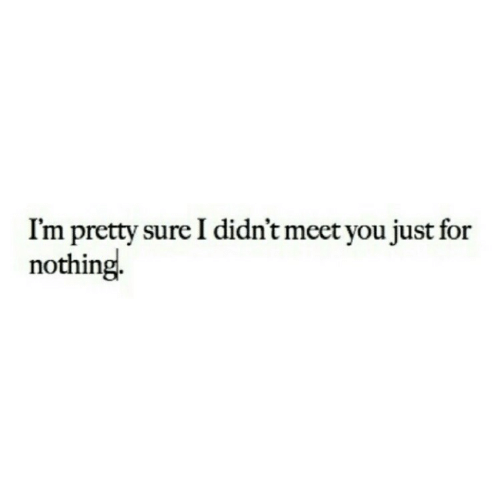 im-pretty-sure: I'm pretty sure I didn't meet you just for  nothing