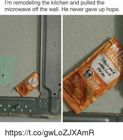 Memes, Hope, and Never: I'm remodeling the kitchen and pulled the  microwave off the wall. He never gave up hope. https://t.co/gwLoZJXAmR
