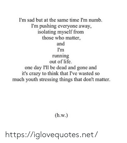 Im Sad: I'm sad but at the same time I'm numb.  I'm pushing everyone away,  isolating myself from  those who matter  and  I'm  running  out of life  one day I'll be dead and gone and  it's crazy to think that I've wasted so  much youth stressing things that don't matter  (h.w.) https://iglovequotes.net/