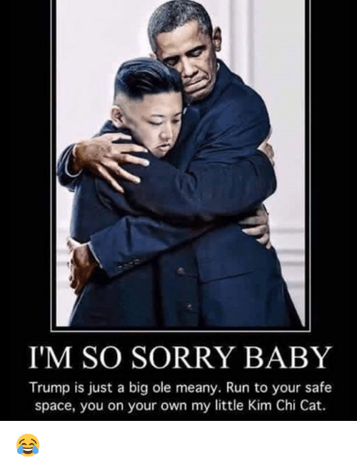Run, Sorry, and Space: IM SO SORRY BABY  Trump is just a big ole meany. Run to your safe  space, you on your own my little Kim Chi Cat. 😂