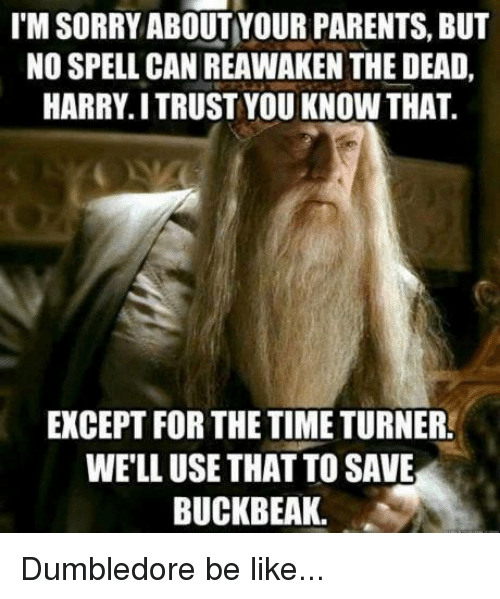 time turner: IM SORRY ABOUT YOUR PARENTS, BUT  NO SPELL CAN REAWAKEN THE DEAD,  HARRY ITRUST YOU KNOW THAT.  EXCEPT FOR THE TIME TURNER!  WELL USE THAT TOSAVE  BUCKBEAK. Dumbledore be like...