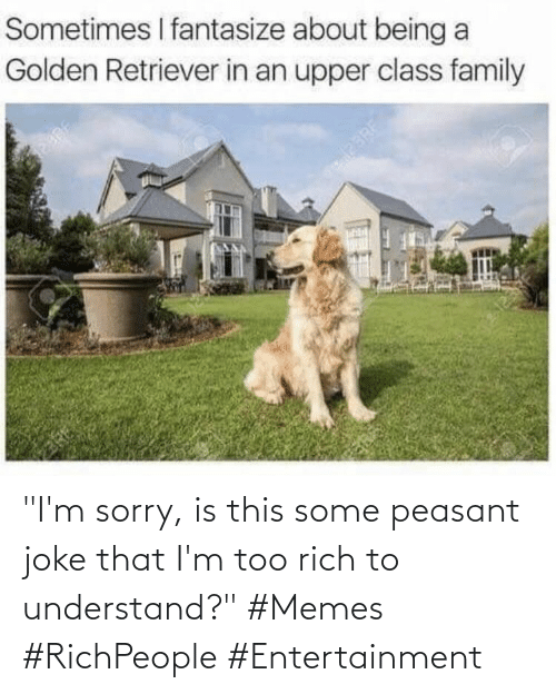"""Peasant: """"I'm sorry, is this some peasant joke that I'm too rich to understand?"""" #Memes #RichPeople #Entertainment"""