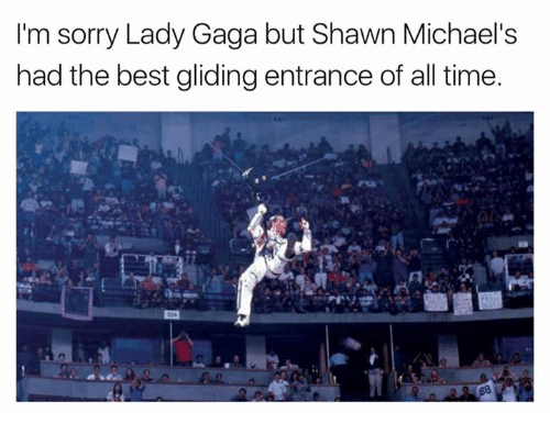 Lady Gaga, Nfl, and Sorry: I'm sorry Lady Gaga but Shawn Michael's  had the best gliding entrance of all time.